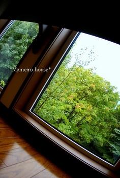 mameirohouse100824-3.jpg