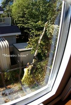 mameirohouse100917-2.jpg