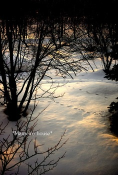 mameirohouse110228-7.jpg