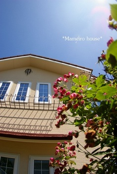mameirohouse 100717-2.jpg